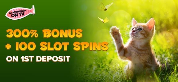 Kitty Bingo 1st Deposit Bonus